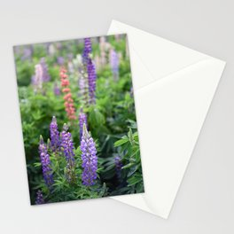Purple lupines in the field Stationery Cards