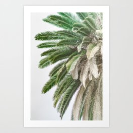 Nature photography tropical vintage palm leaf I Art Print