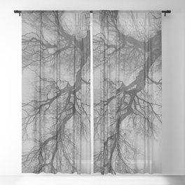 Lungs of the Earth | Nature Photography | Weeping Willow | Black and White | black-and-white | bw Sheer Curtain