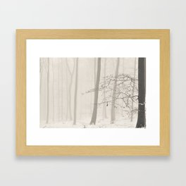 nature abstract Framed Art Print