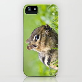 Cute Chipmunk iPhone Case