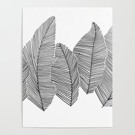 drawn feathers Poster