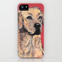 Labrador Retriever Portrait iPhone Case