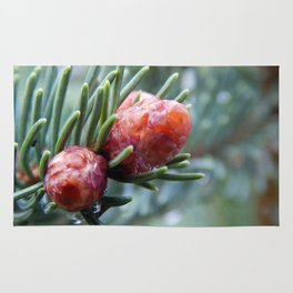 Tiny Red Pine Cones Rug