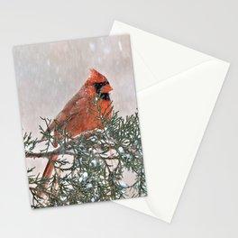 Snowfall Cardinal Stationery Cards