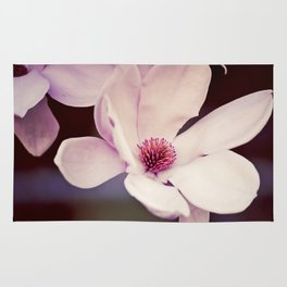 Magnolia in Bloom, 2 Rug