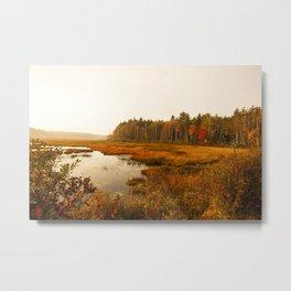 Golden Days Start - Autumn Landscape Metal Print