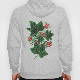 Maple Leaf, Canadian Leaf, Leaf Art, Watercolor Art Hoody