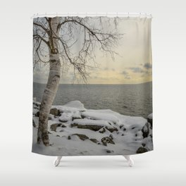 Curves of the Silver Birch by Teresa Thompson Shower Curtain