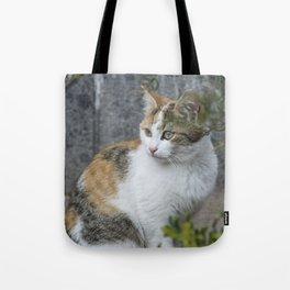Molly, Portrait n. 6 Tote Bag