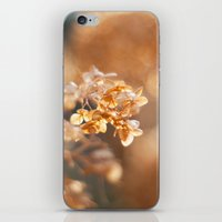 gold glitter iPhone & iPod Skins featuring Gold Glitter by Katie Kirkland Photography