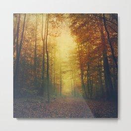 Autumn Morning Mood Metal Print