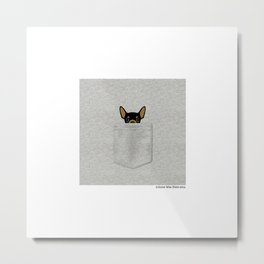 Pocket Chihuahua - Black Metal Print