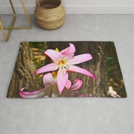 A Bright, Beautiful Pink Lily Rug