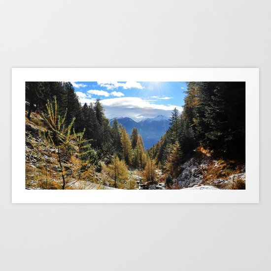 Firs And Larches Art Print