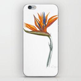 Bird of Paradise 01 Botanical Flower iPhone Skin
