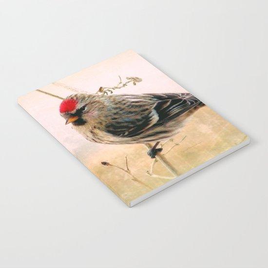 Redpoll Notebook