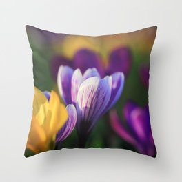 Beautiful Crocuses in Spring Throw Pillow