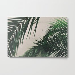 Tropical Palm Leaves Metal Print