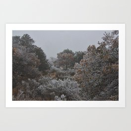 Ice Fog Kind of Day Art Print