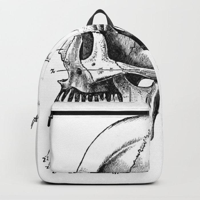 Skull 3 Backpack