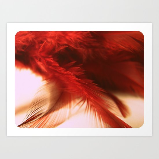ruby feathers Art Print