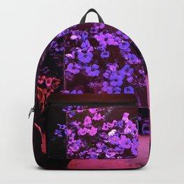 Dream Screening Backpack