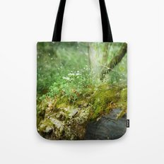 Where Miracles Are Born Tote Bag