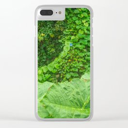 Florida: Lush Forest 1 Clear iPhone Case