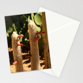 A Funny Sight Cacti Stationery Cards