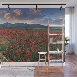 Big fields of poppies. At dream sunset. Wall Mural