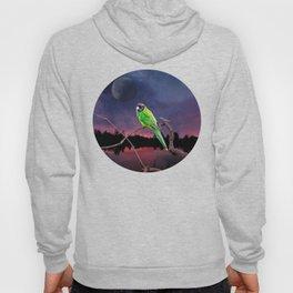 Australian Parrot Against a Night Sky Galaxy Hoody