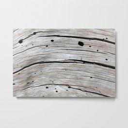 Dried Wood Grain (Lower Echo Lake, California) Metal Print