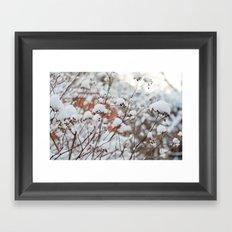 Bush in the Snow Framed Art Print