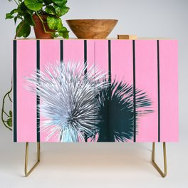 Yucca Plant in Front of Striped Pink Wall Credenza