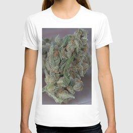 Close up macro of Dr. Who Medicinal Medical Marijuana T-shirt