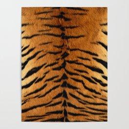 Faux Siberian Tiger Skin Design Poster