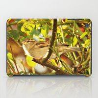 sparrow iPad Cases featuring Sparrow by Judy Palkimas
