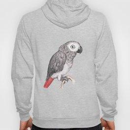 Cute African grey parrot Hoody