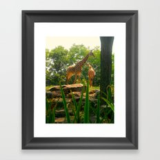 Giraffing Around  Framed Art Print