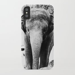 Dangerously Delicate iPhone Case