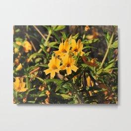 Monkey Flower in the Foothills Metal Print
