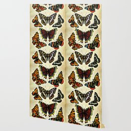 Vintage Butterflies Collage Wallpaper