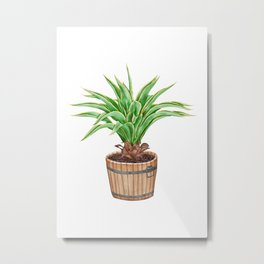 Watercolor Illustration of a Agave Metal Print
