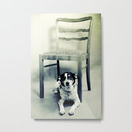 Dog under the old chair Metal Print