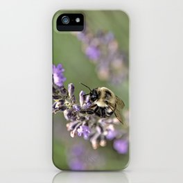 Bumblebee On The Lavender Field 3 iPhone Case