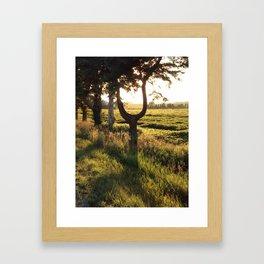 The  U tree Framed Art Print