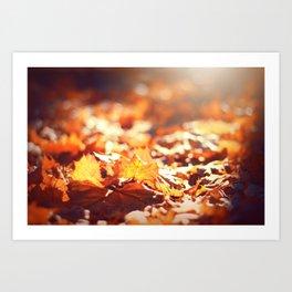 Autumn Leafs (Color) Art Print