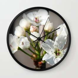 Flowering Pear Tree Wall Clock