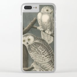 Vintage Illustration of Snowy Owls (1840) Clear iPhone Case